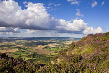 Looking towards Roseberry Topping and Cleveland from Busby Moor, North Yorkshire Moors, Yorkshire, England, United Kingdom, Europe
