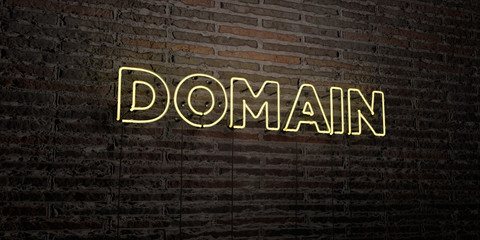 DOMAIN -Realistic Neon Sign on Brick Wall background - 3D rendered royalty free stock image. Can be used for online banner ads and direct mailers..