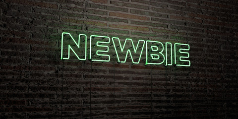 NEWBIE -Realistic Neon Sign on Brick Wall background - 3D rendered royalty free stock image. Can be used for online banner ads and direct mailers..
