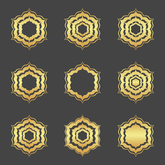 Set of abstract element, gold  decoration, frame.