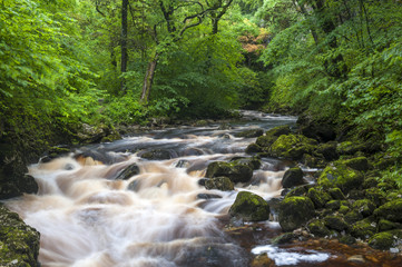 Ingleton Waterfalls, River Twiss, Ingleton, Yorkshire Dales, Yorkshire, England, United Kingdom, Europe