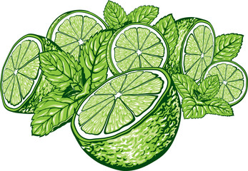 Green lime slices with mint