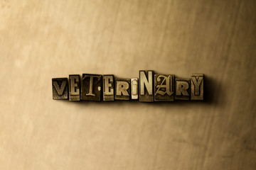 VETERINARY - close-up of grungy vintage typeset word on metal backdrop. Royalty free stock illustration.  Can be used for online banner ads and direct mail.