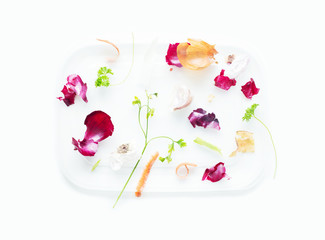 Vegetables leftovers - biodegradable food remnants