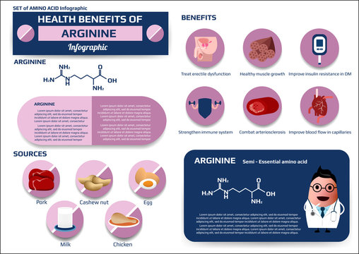 Health benefits of arginine (essential amino acid) infographic, supplement and nutrition vector illustration