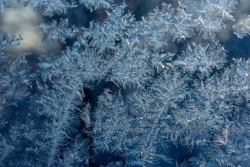 Texture of ice hoarfrost