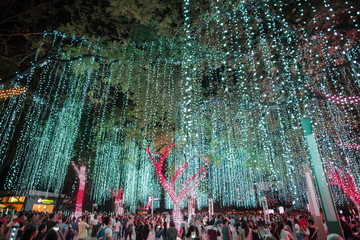Light and Sound Show at Ayala Triangle Garden Makati