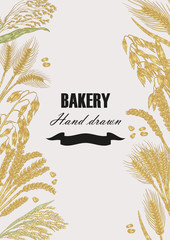 Bread design template. Vector banner with cereals. Hand drawn