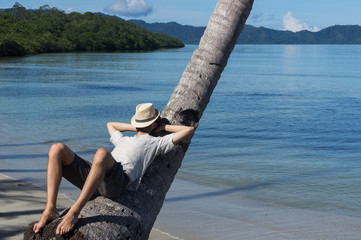 Sieste sur un cocotier