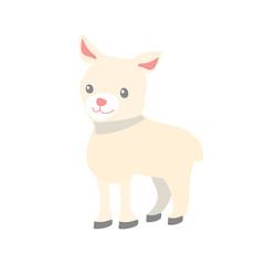 Cute Cartoon Lamb on White Background