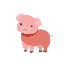 Cute Cartoon  Piglet on White Background