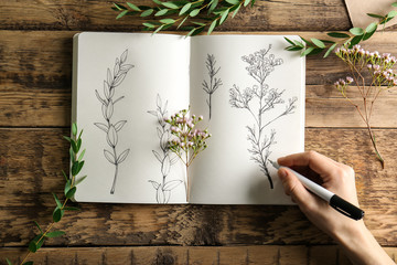Female hand drawing plants in sketchbook on wooden background