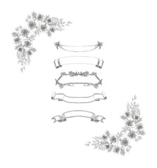 Hand drawn vintage banners and floral decorative elements