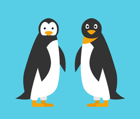 two cute cartoon penguins in flat style