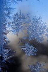 Fabulous patterns on frosty window