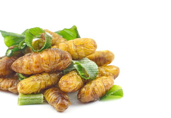 Silkworm pupa fried with green pandan leaf isolated on white bac
