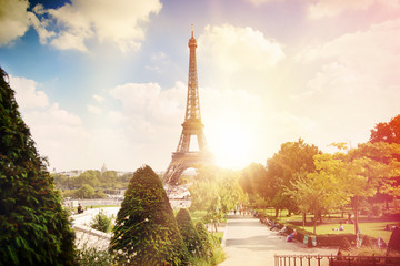 View on Eiffel tower through green summer trees with sunset rays. Beautiful Romantic background. Eiffel Tower from Champ de Mars, Paris, France.