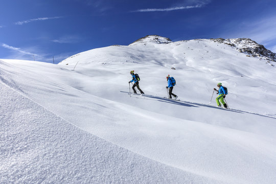 Alpine skiers proceed at high altitude on a sunny day in the snowy landscape, Stelvio Pass, Valtellina, Lombardy