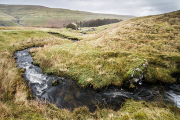 Stream and cottage, above Buckden, Wharfedale, Yorkshire Dales, Yorkshire, England, United Kingdom, Europe