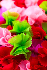 Wrapping coins colorful petals.