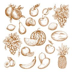 Fresh fruit sketch set for healthy food design