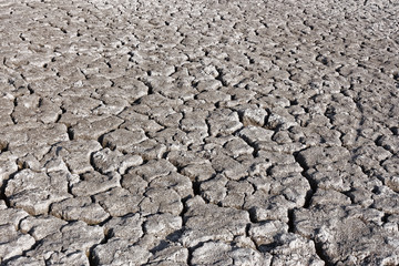 Cracked grey soil surface of dried pond