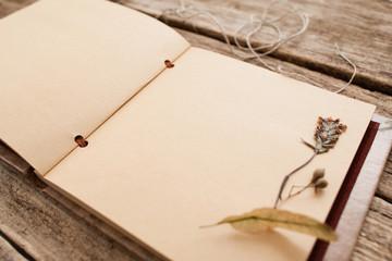 Herbarium Art Hobby Creativity Inspiration Idea Vintage Memory Nostalgia Floristic Science Concept