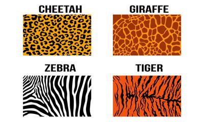 Simple Cheetah Jaguar Giraffe Zebra Tiger Vector Skin Pattern