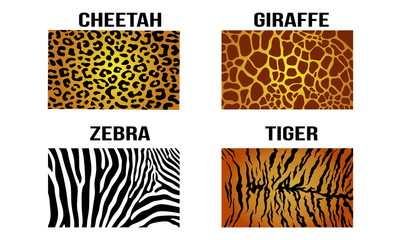 Cheetah Leopard Giraffe Zebra Tiger Vector Skin Pattern Background
