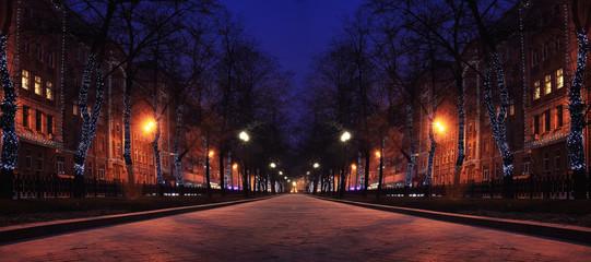 Night winter landscape in amazing city Fotomurales