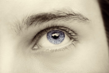 Close up image of insightful look blue human eye