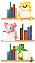 Animals and books on bookshelf