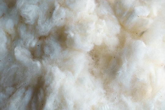White raw silk wool