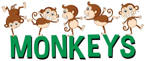 Font design for word monkeys