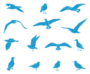 Silhouettes of flying seagulls.