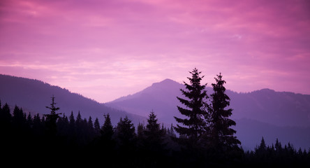 A beautiful colorful sunset in Tatra mountains. Decorative look Wall mural