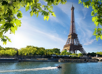 Seine and Eiffel Tower Wall mural