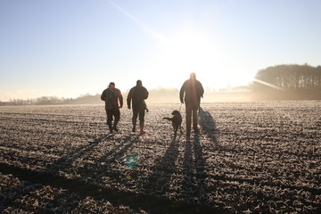 Fototapeta Hunting crew is heading out to hunt early morning in Denmark.