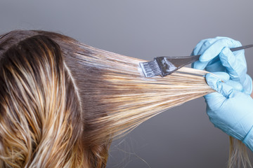 Professional hairdresser dyeing hair of her client in salon. Selective focus.