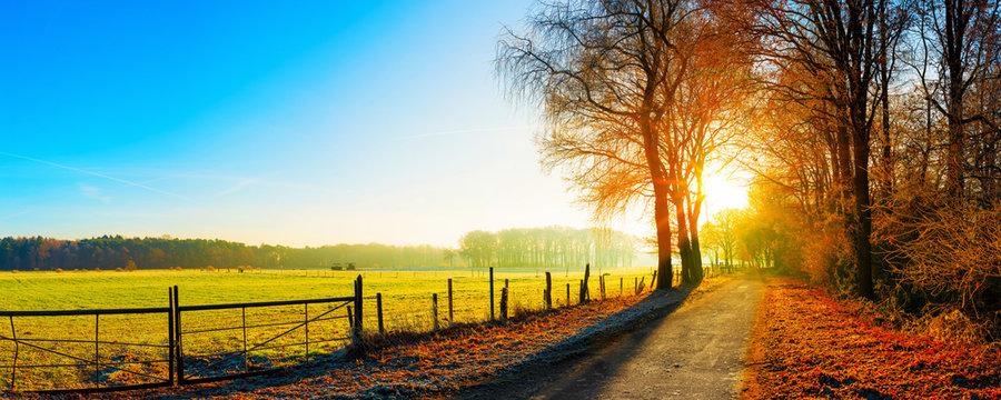 Landschaft im Herbst, Straße neben eine Weide bei Sonnenaufgang
