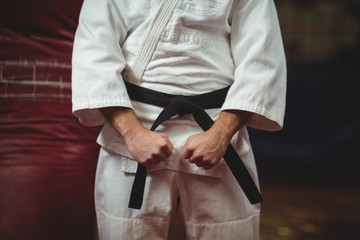 Mid section of karate player making fist