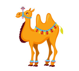 Illustration of cute decorated  camel cartoon. Vector illustration isolated on white background.