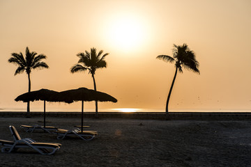 Amazing Sunset palms sun lounger beach Salalah Oman 2