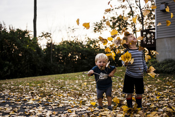 Cheerful brothers playing with maple leaves in backyard during autumn