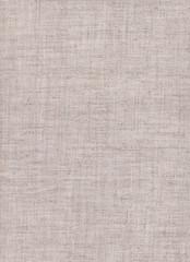 White coarse canvas texture.