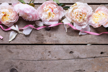 Border from pink peonies flowers on aged wooden background.