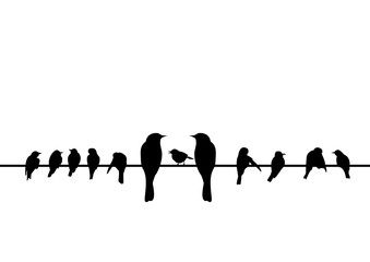 silhouettes of the birds sitting on electric wire