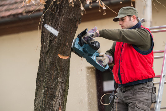 Man cutting a branch with chainsaw in the yard