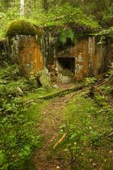 Abandoned bunker hidden deep in the forest. Sumava National park - Bohemian Forest, Czech Republic