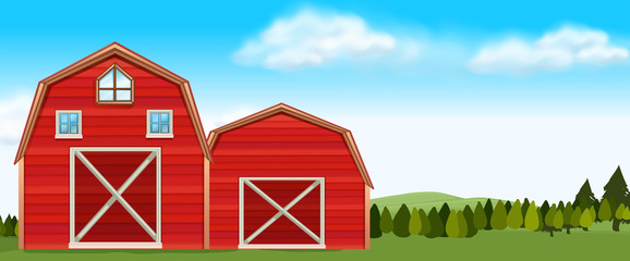 Farm scene with barns in field